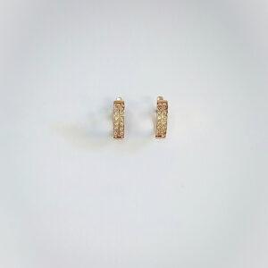 עגילי זהב דגם WE536